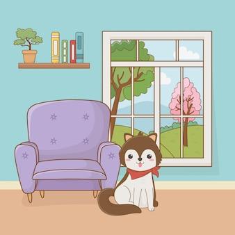 Mascotte del piccolo cane nella stanza della casa