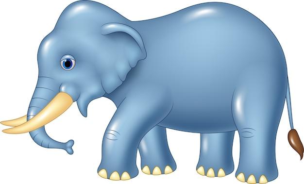 Mascotte sveglia dell'elefante isolata su fondo bianco