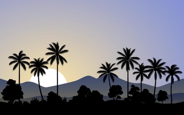 Mattina nella foresta di palme