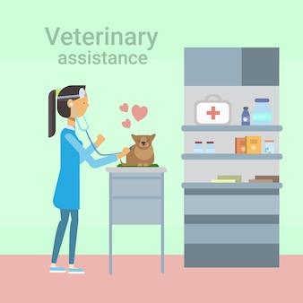 Medico veterinario cure animal in clinic of veterinary assistance
