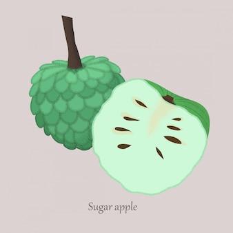 Mela di zucchero o mela cannella intera e fetta di mela isolata su gray.