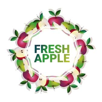 Mela frutta cerchio colorato copia spazio organico su sfondo bianco modello