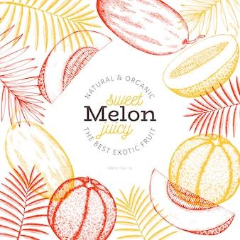 Meloni e angurie con modello di foglie tropicali. illustrazione disegnata a mano frutta esotica. frutto in stile inciso.