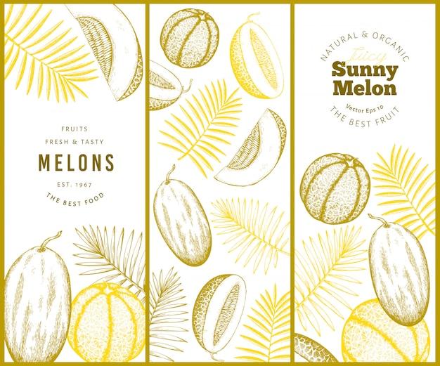 Meloni e angurie disegnati a mano con l'insieme dell'insegna delle foglie tropicali.