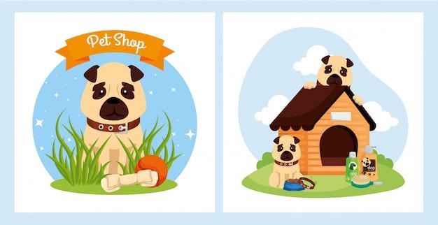 Metta il manifesto del veterinario del negozio di animali con le icone