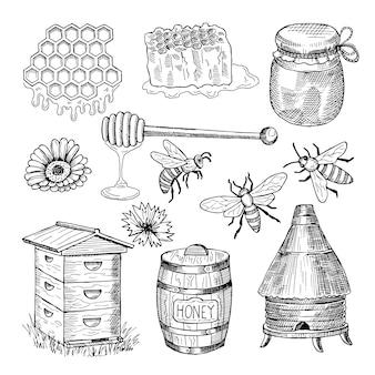 Miele, ape, nido d'ape e altre immagini disegnate a mano tematicamente. illustrazione vettoriale vintage