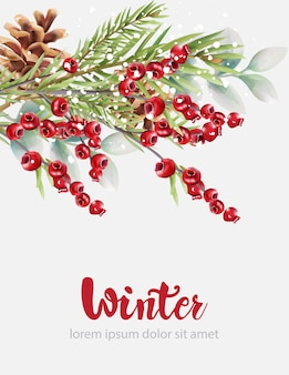 Mirtilli rossi di inverno con le foglie e la pigna verdi dell'albero di abete