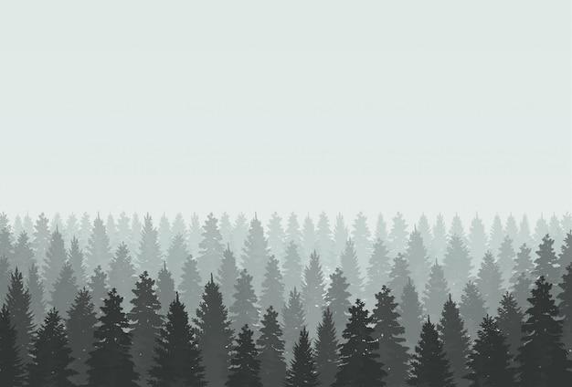 Misterioso paesaggio foresta nebbiosa