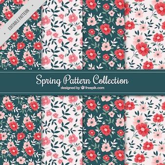 Modelli di primavera con fiori rossi e rosa