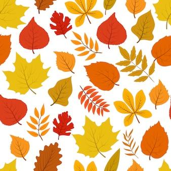 Modello autunnale senza cuciture delle foglie di autunno dorate della foresta