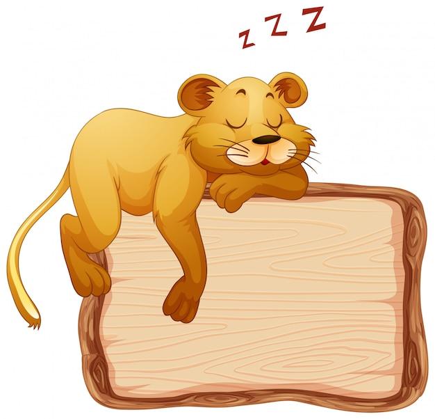 Modello del bordo con la leonessa sveglia su fondo bianco