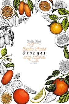 Modello di agrumi. illustrazione disegnata a mano della frutta di colore. cornice in stile inciso. agrumi vintage