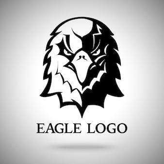 Modello di aquila per logo, badge, etichetta, ecc.