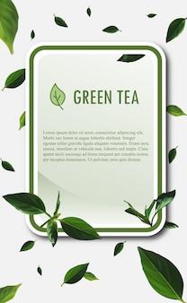 Modello di bandiera del tè verde. illustrazione vettoriale di tè verde.