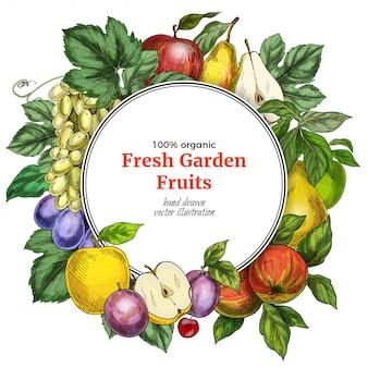 Modello di bandiera rotonda di frutta