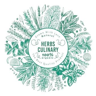 Modello di banner di erbe e spezie culinarie.