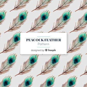 Modello di bella piuma di pavone dell'acquerello