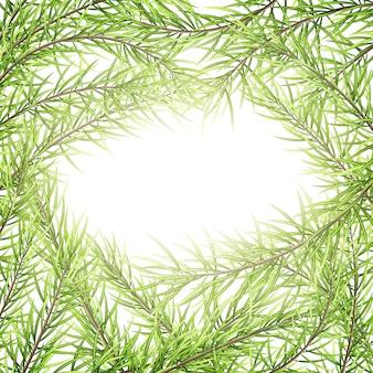 Modello di biglietto di auguri di buon natale e felice anno nuovo. cornice di rami di un albero.