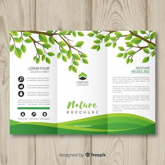 Modello di brochure natura triflod