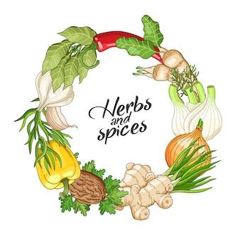 Modello di cerchio vegetale vettoriale con spezie