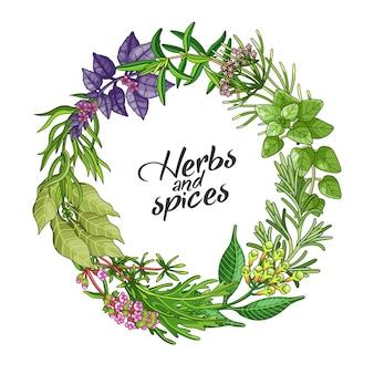 Modello di cerchio verde con spezie ed erbe