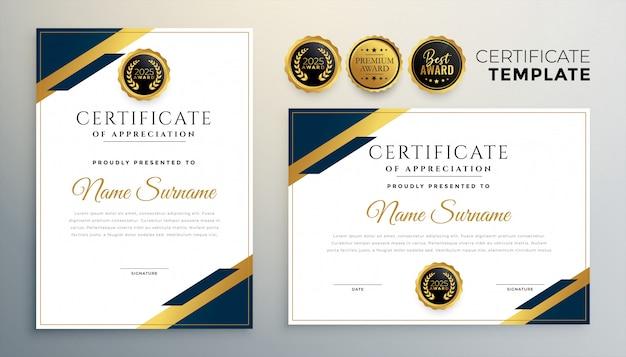 Modello di certificato di diploma professionale in stile premium