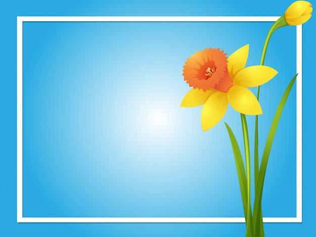 Modello di confine con daffodil giallo