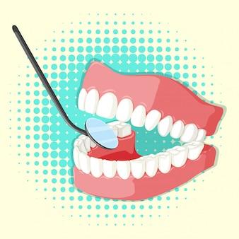 Modello di denti e specchio