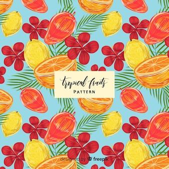 Modello di frutta tropicale realistico disegnato a mano