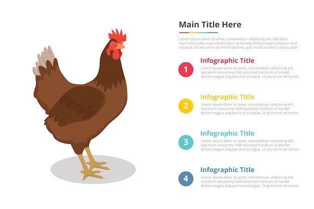 Modello di infografica gallina