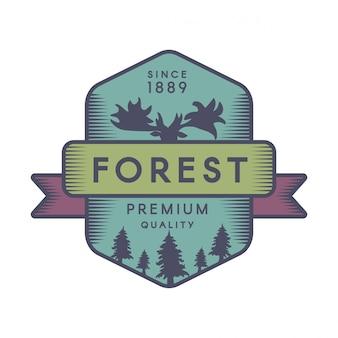 Modello di logo di colore della foresta