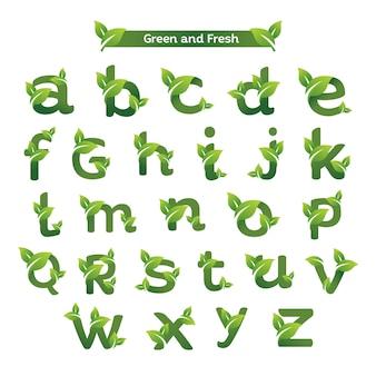 Modello di logo di eco lettera verde pack