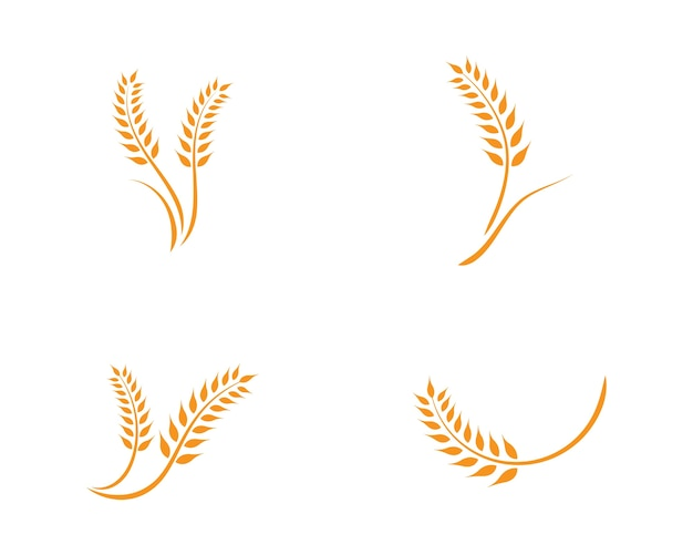 Modello di logo di grano