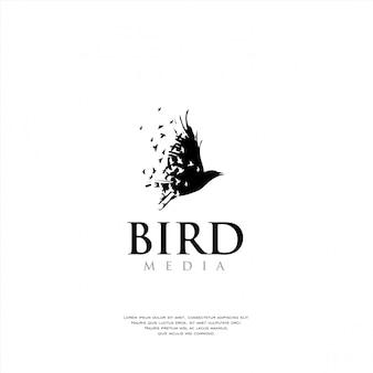 Modello di logo uccello unico