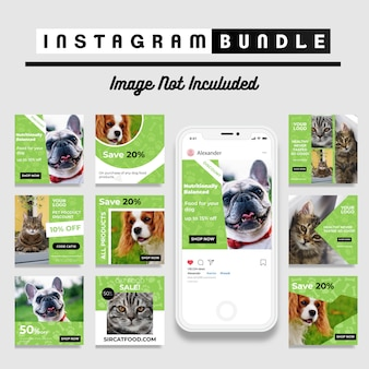 Modello di post instagram di pet shop