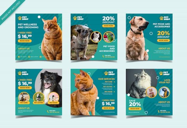Modello di posta instagram negozio di animali