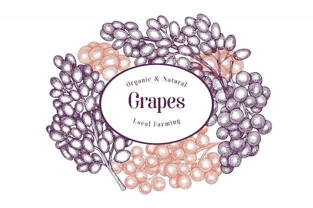 Modello di progettazione dell'uva. illustrazione disegnata a mano della bacca dell'uva di vettore.