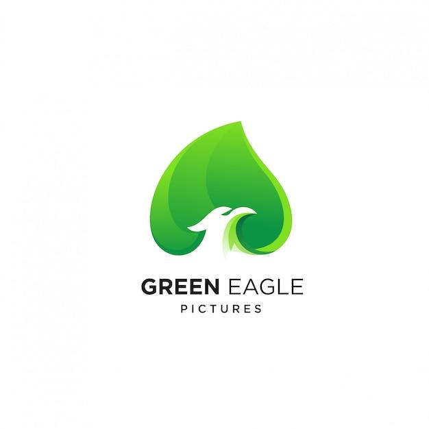 Modello di progettazione di logo di aquila verde