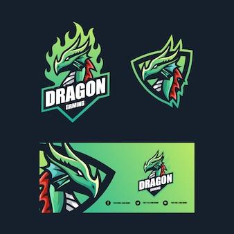 Modello di progettazione di vettore dell'illustrazione di concetto del drago