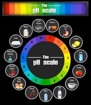Modello di scala del ph scientifico