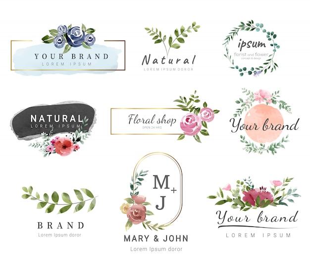 Modello logo premium stile acquerello