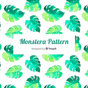 Modello monstera acquerello