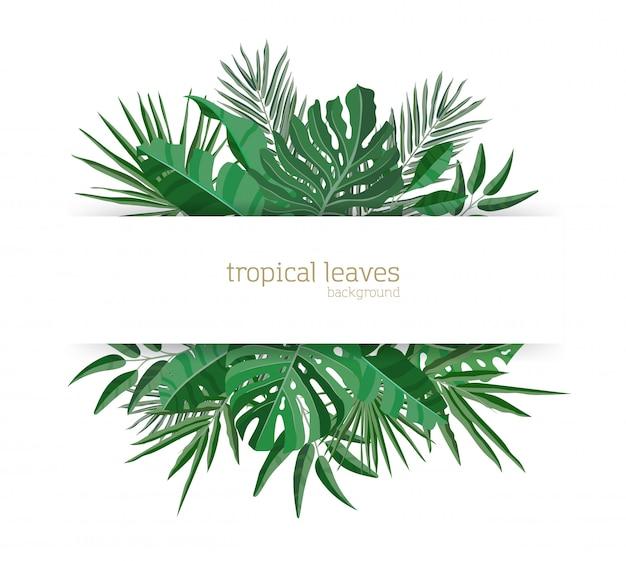 Modello orizzontale dell'insegna decorato con fogliame verde delle piante tropicali di paradiso o foglie di palma esotiche verdi. elegante composizione hawaiana. colorata illustrazione realistica stagionale stagionale.