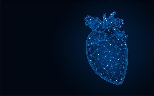 Modello poli basso cuore umano, grafica astratta di organi umani, anatomia poligonale wireframe illustrazione vettoriale su sfondo blu scuro