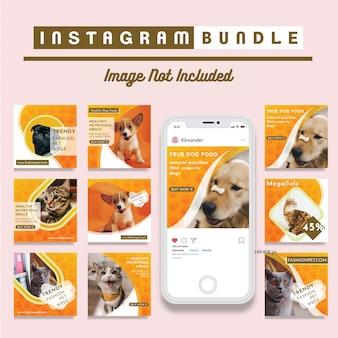 Modello promozionale quadrato social media negozio di animali