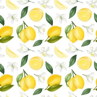 Modello senza cuciture con limoni disegnati a mano e fiori di limone su un bianco
