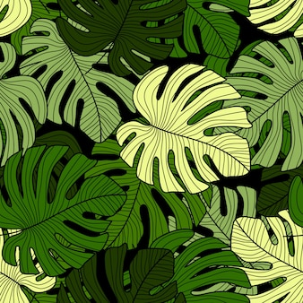 Modello senza cuciture delle foglie verdi di monstera su fondo nero.