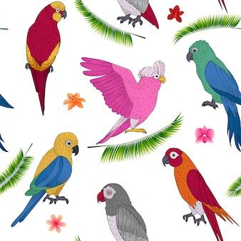 Modello senza cuciture di vacanze tropicali con pappagalli esotici e fiori