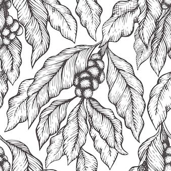 Modello senza cuciture di vettore del ramo della pianta del caffè