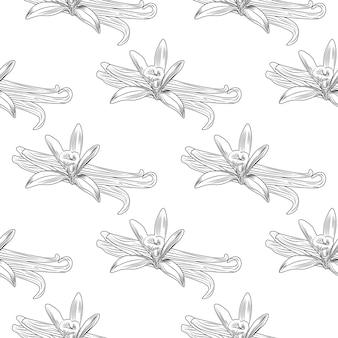 Modello senza cuciture disegnato a mano della foglia del ramo della pianta del seme di fiore della vaniglia.
